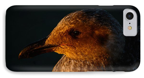 IPhone Case featuring the photograph Seagull Sunrise by Tikvah's Hope