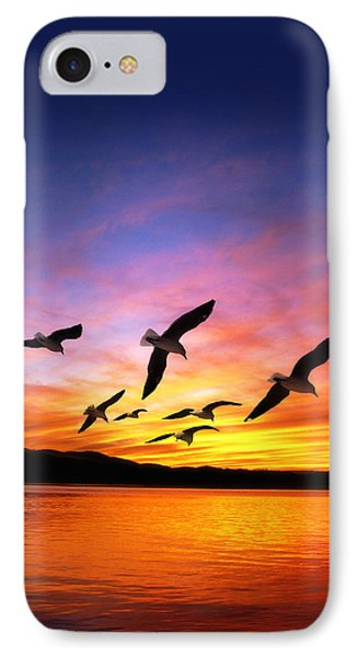 Seagull Sunset   IPhone Case by Gravityx Designs