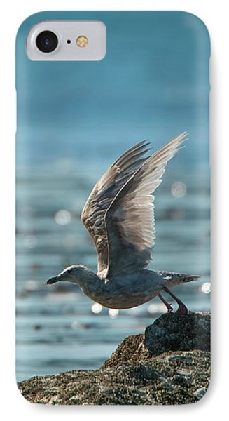 Seagull Takeoff IPhone Case