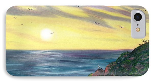 Seagulls At Sunset IPhone Case by Laura Iverson