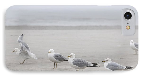 Seagulls On Foggy Beach IPhone Case by Elena Elisseeva