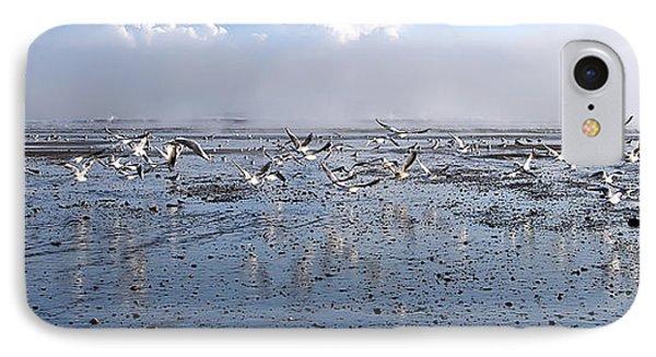 Seagulls IPhone Case by Svetlana Sewell