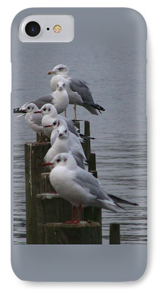 Seaguls 4 Phone Case by Cristina Rettegi