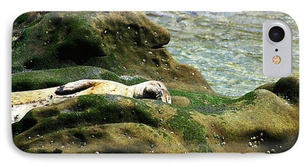 IPhone Case featuring the photograph Seal On The Rocks by Anthony Jones