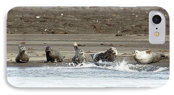 Seals Of Hvitserkur IPhone Case