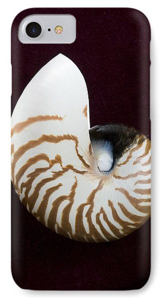 Seashell On Black Background IPhone Case by Bill Brennan - Printscapes