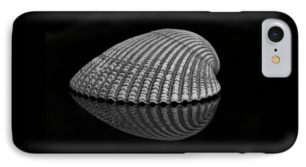 Seashell Study IPhone Case
