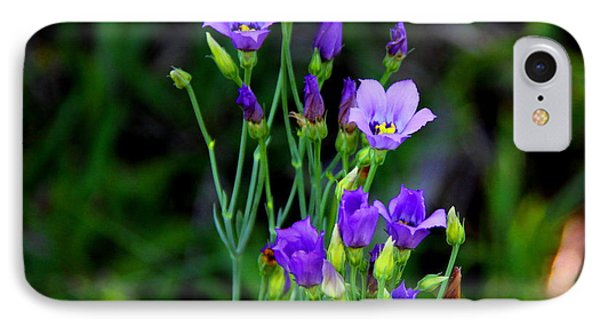 IPhone Case featuring the photograph Seaside Gentian Wildflower  by Barbara Bowen