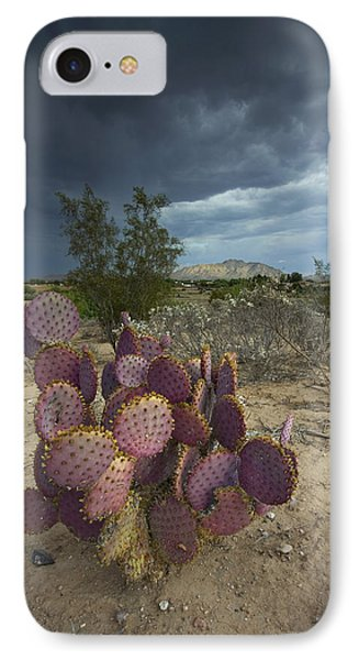 Season Of The Storm IPhone Case by Sue Cullumber