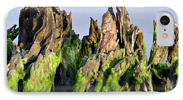 Seaweed-covered Beach Stump IPhone Case by Bruce Gourley