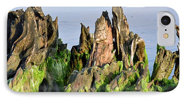 Seaweed-covered Beach Stump Mountain Range IPhone Case by Bruce Gourley