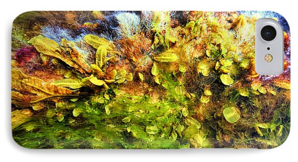 Seaweed Grunge IPhone Case by Todd Breitling