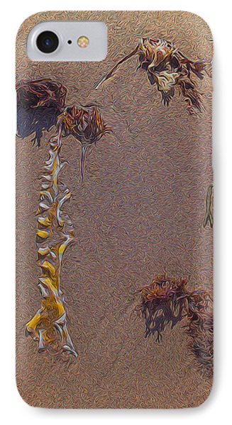 Seaweed On Clayhead Beach IPhone Case by Todd Breitling
