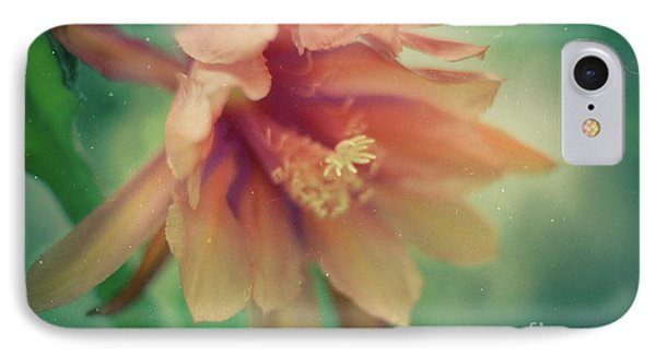 IPhone Case featuring the photograph Secret Garden by Ana V Ramirez