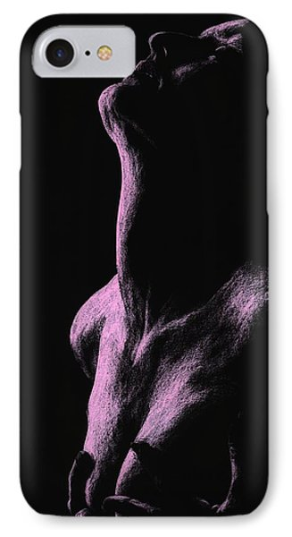Secrets IPhone Case by Richard Young
