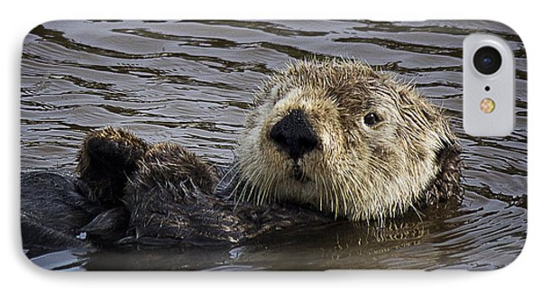 See Otter Posing IPhone Case