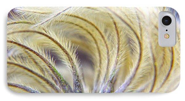 Seedheads IPhone Case by Brian Roscorla