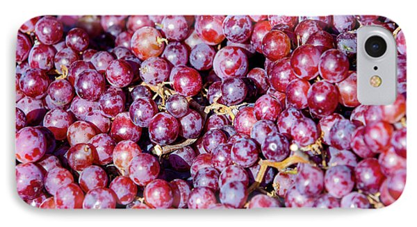 Seedless Grapes IPhone Case by Todd Klassy