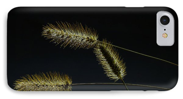 Seeds Of Life IPhone Case by Christopher L Thomley