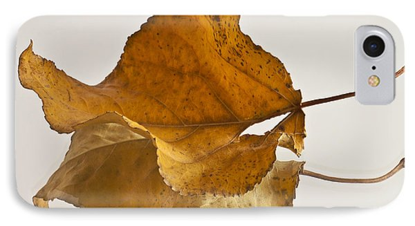 Seeing Double Autumn Leaf  IPhone Case by Sandra Foster