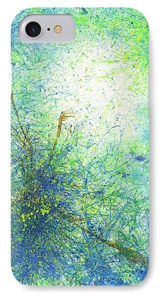 Seeking Truth On Gaia #421 IPhone Case by Rainbow Artist Orlando L aka Kevin Orlando Lau