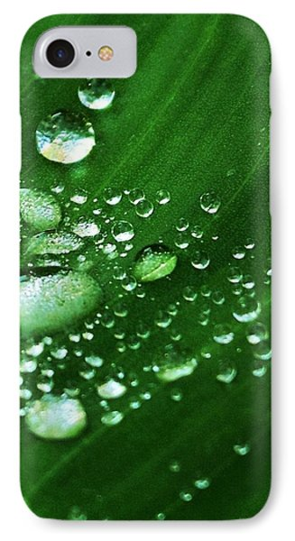 Growing Carefully IPhone Case by John Glass