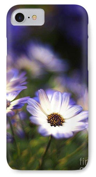 Senetti Dreams IPhone Case by Dorothy Lee