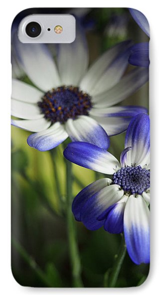 Senetti On A Warm Spring Day 2 IPhone Case by Dorothy Lee