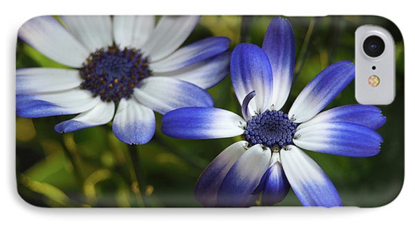 Senetti On A Warm Spring Day IPhone Case by Dorothy Lee