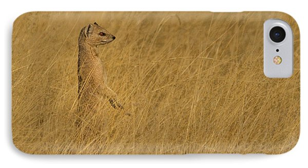 Meerkat iPhone 7 Case - Sentinel by Linda Oliver