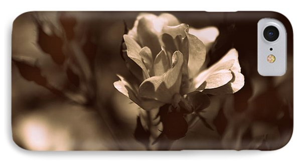 Sepia Blossom IPhone Case by Jessica Jenney