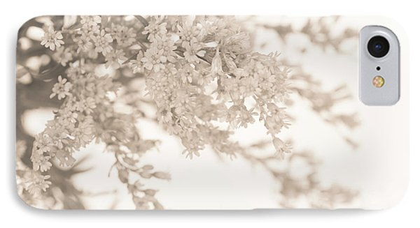 Sepia Solidago I IPhone Case by Anne Gilbert