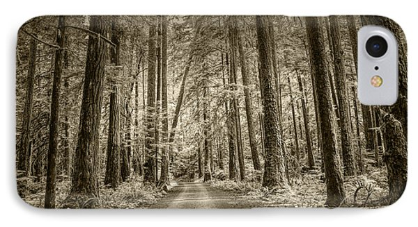 Sepia Tone Of A Road In A Rain Forest IPhone Case by Randall Nyhof