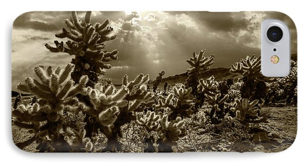 IPhone Case featuring the photograph Sepia Tone Of Cholla Cactus Garden Bathed In Sunlight by Randall Nyhof