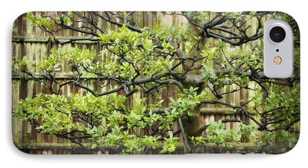 Serene Japanese Tree With Bamboo Fence IPhone Case