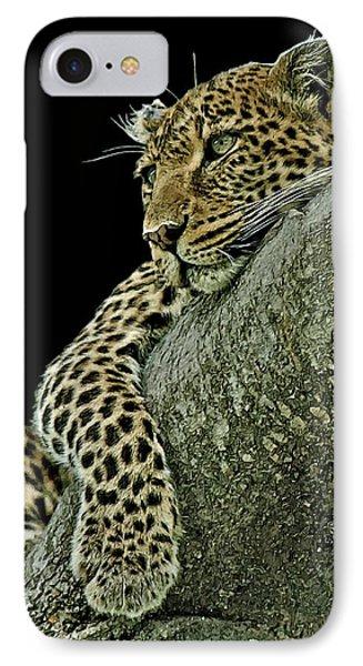 Serengeti Leopard 2a IPhone Case