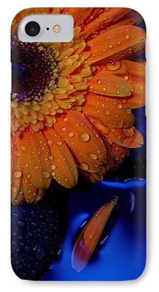 Serenity IPhone Case by Amber Kresge