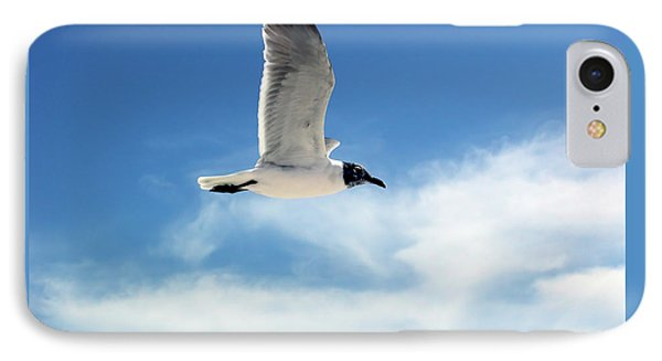 Serenity Seagull IPhone Case by Marie Hicks