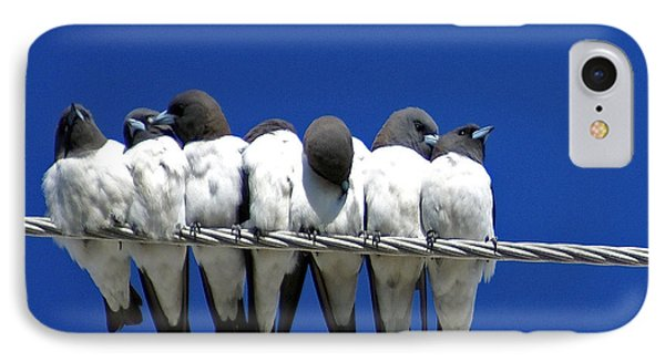 Swallow iPhone 7 Case - Seven Swallows Sitting by Holly Kempe