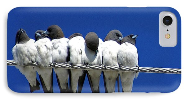 Seven Swallows Sitting Phone Case by Holly Kempe