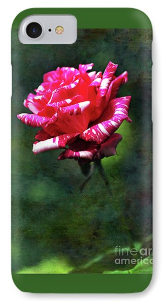 Sexy Rexy Rose Phone Case by Kaye Menner
