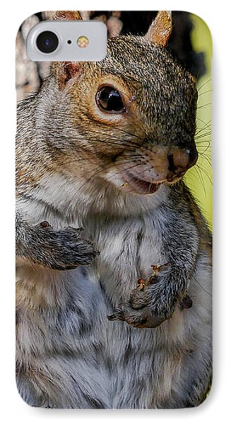 Sexy Squirrel IPhone Case