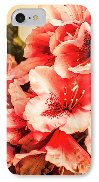 Shabby Chic Romances IPhone Case by Jorgo Photography - Wall Art Gallery