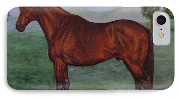 Shadeed Champion European Racehorse IPhone Case