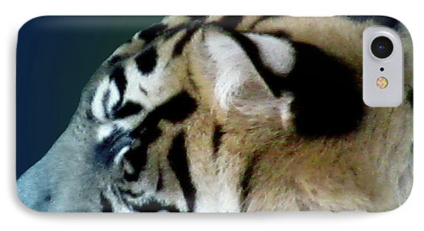 Shades Of A Tiger  Series Phone Case by Debra     Vatalaro