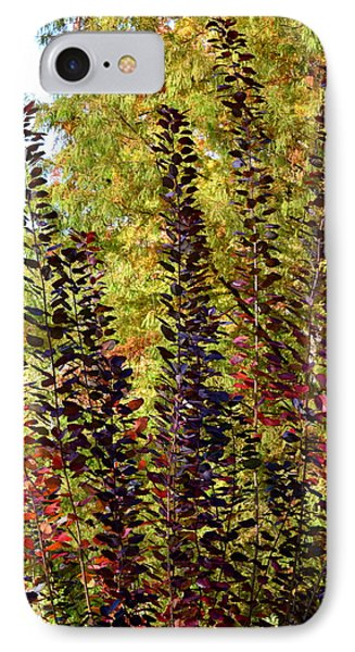 Shades Of Fall IPhone Case by Deborah  Crew-Johnson
