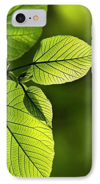 Shades Of Green Phone Case by Christina Rollo