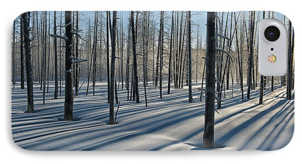 Shadows Of The Forest Phone Case by Sandra Bronstein