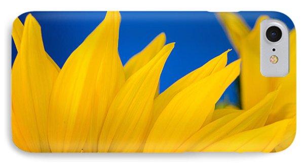 Shady Shy Sunflowers IPhone Case