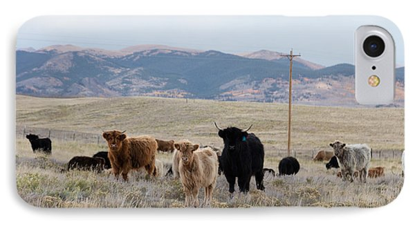 IPhone Case featuring the photograph Shaggy-coated Cattle Near Jefferson by Carol M Highsmith
